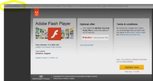 Fake Adobe Flash Download